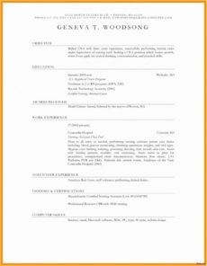 editable 019 travel itinerary template word free download executive assistant travel itinerary template excel