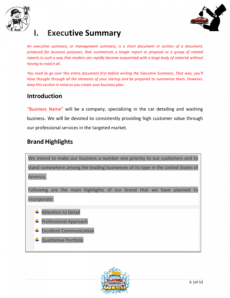 editable car wash business plan template plan sample pages  black car wash proposal template pdf