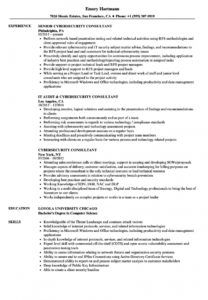 free cybersecurity consultant resume samples  velvet jobs cyber security proposal template word