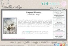 printable wedding planner wedding planner proposal wedding planning proposal template pdf