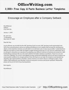 sample mock business l plan pdf suyhi margarethaydon com samples of executive coaching proposal template pdf