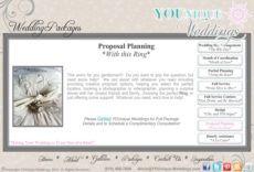 sample wedding planner wedding planner proposal wedding planner proposal template word