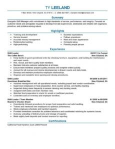 11 amazing management resume examples  livecareer management position resume template pdf