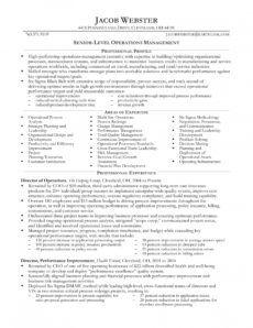 24 best sample executive resume templates  wisestep executive management resume template excel