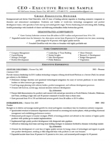 executive resume examples & writing tips  ceo cio cto executive management resume template excel