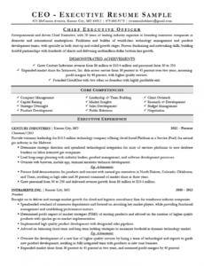 executive resume examples & writing tips  ceo cio cto executive management resume template excel