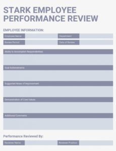 sample 12 powerful performance review examples  expert tips performance management document template pdf