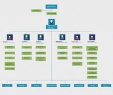 sample organizational chart templates  editable online and free to management organizational chart template excel