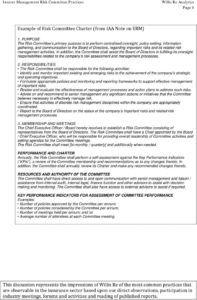 engage erm advisory insurer management risk committee risk management committee charter template excel