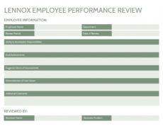 sample 17 powerful performance review examples  expert tips individual performance management template example