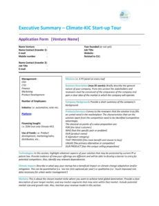 sample project executive summary template ~ addictionary project management summary template pdf