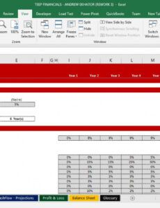 free comprehensive profit & loss and balance sheet template change management post implementation review template example