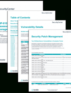 sample cip010 r3 vulnerability assessment and patch management vulnerability management policy template doc