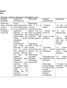 printable anemia nursing care plan  nursing care plan examples self management care plan template excel