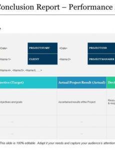 printable project governance model powerpoint presentation slides project management governance structure template excel