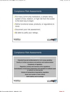 sample compliance management systems a blueprint for success pdf free compliance management system template doc