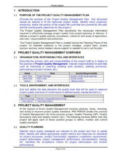 free 9 project quality assurance plan  pdf doc  examples it program management plan template word