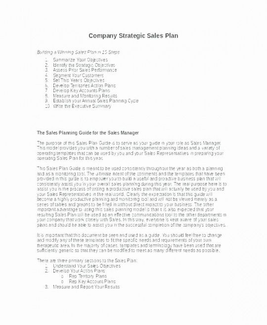 territory management plan template  stcharleschill template territory management plan template excel