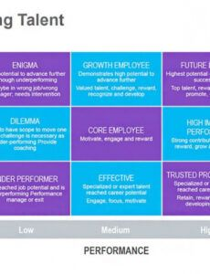 printable management  succession planning talent management management succession plan template example