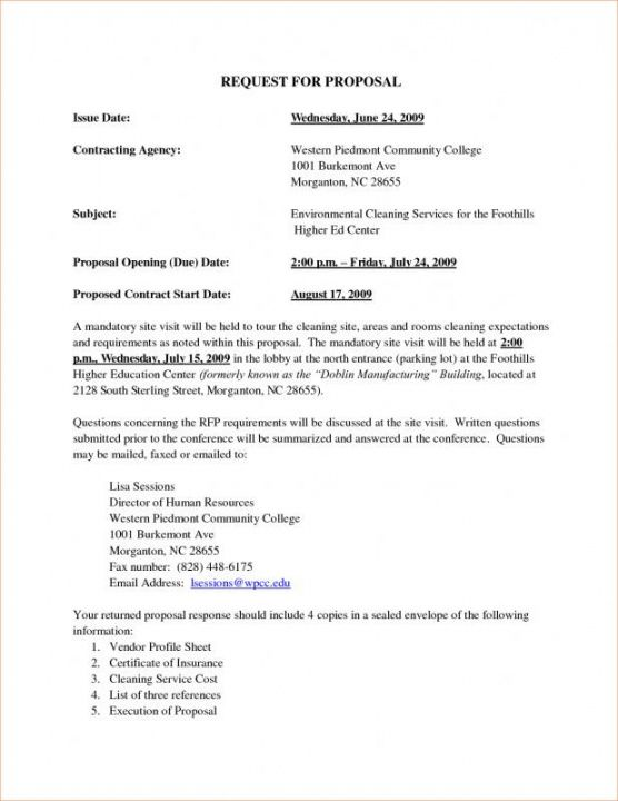 sample proposal for services  template business federal government proposal template example